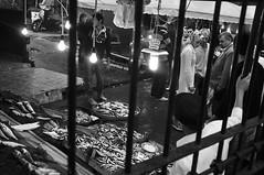 Karaky outdoor fish market in stanbul.. (ilmikadim) Tags: people fish black look turkey fisherman market outdoor watch istanbul seller