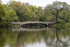 Bow Bridge (Joe Josephs: 2,650,890 views - thank you) Tags: nyc newyorkcity newyork landscapes centralpark photojournalism centralparknewyork urbanlandscapes travelphotography landscapephotography cityparks urbanparks copyrightjoejosephsphotography