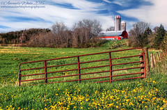Down on the Farm (sminky_pinky100 (In and Out)) Tags: travel blue red canada green tourism rural landscape outdoors countryside gate pretty novascotia scenic his colourful agriculture truro agricultural fram omot cans2s
