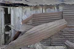 Iron Mundt (Rocky Pix) Tags: unknowntraveler grave site berthoud larimer county highway287northfencebarnyardshedcorralsfieldsagriculturemayspringrockieslarimercountycoloradostvrainriverbasinrockypixrockymountainpixwmichelkiteleyf16160thsec29mm 70200mm f28 f28g nikkor normalzoom monopod