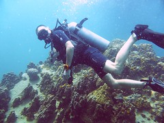 Koh Tao (Scuba Diving), Thailand (Jan-2016) 14-091 (MistyTree Adventures) Tags: ocean sea water coral thailand twins marine asia seasia underwater outdoor diving scubadiving diver kohtao gulfofthailand scubadiver panasoniclumix