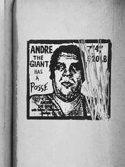 Andre the Giant (Steve Taylor (Photography)) Tags: newzealand portrait blackandwhite streetart art monochrome graffiti monotone nz bobby southisland andrethegiant scratched southernalps posse thebrain heenan 520lb