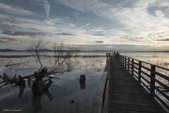 Pier (Massimo_Discepoli) Tags: blue sky people italy lake water clouds pier umbria trasimeno