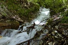 Rio di Paiano (BIO_MA Roberto Perucci) Tags: waterfall acqua sibillini parconazionale