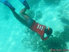 Raya Island Phuket snorkeling (1) (Eric Lon) Tags: sea mer fish swim stars thailand island nager holidays jellyfish ile diving snorkeling corals poissons etoiles coraux meduse plonger ericlon