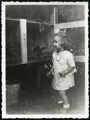 Archiv EE351 Am Hasenstall, 7. August 1941 (Hans-Michael Tappen) Tags: girl 1940s mdchen 1941 kaninchen kleidung hasen kaninchenstall stallhase 1940er archivhansmichaeltappen