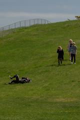 teddybearpicnicday-24 (claire.pontague) Tags: bear park party kite sunshine outdoors picnic teddy stage saskatoon dancefloor djs 2016