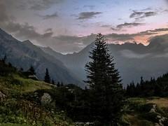 Tombe du Jour  Tr la Tte (Frdric Fossard) Tags: texture nature alpes horizon grain peinture ciel arbres nuage crpuscule fort sapin calme coucherdesoleil abstrait hautesavoie valle surraliste alpages crtes contaminesmontjoie trlatte