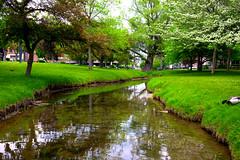 Congress Park, Saratoga Springs, NY (Diacritical) Tags: 3d saratogasprings f80 35 congresspark iso640 0ev summiluxm11435asph centerweightedaverage leicacameraag sec secatf80 leicamtyp240 may252016 douglascpalmer2014