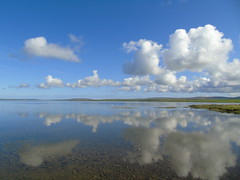 Harray Loch (stuartcroy) Tags: blue sea sky reflection bird beach water beautiful clouds island bay scotland still orkney scenery sony loch harray harrayloch