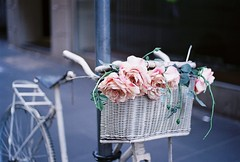 A006067-R1-23-24 (hello_jg) Tags: street pink flowers roses cloud plant flower green film nature rain bike bicycle rose analog 35mm canon vintage whimsy downtown basket cloudy ae1 australia melbourne retro 400 bouquet analogue flinders posy ultramax