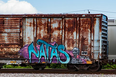 (o texano) Tags: bench graffiti texas houston trains freights natas benching