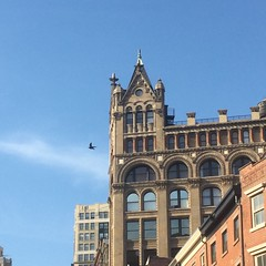 874 Broadway tower, with bird (KLGreenNYC) Tags: nyc unionsquare broadway towers birds architecture neoromanesque