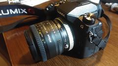 Panasonic Lumix G7 - Zhongyi Lens Turbo ii - Nikon 50mm 1.8D (panos_xgr) Tags: lens lumix 50mm nikon panasonic turbo ii g7 zhongyi 18d