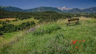 Face au Mont Aiguille....