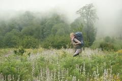 Lena, Northern Jungle, Iran ($ALEH) Tags: fog iran foggy jungle mazandaran