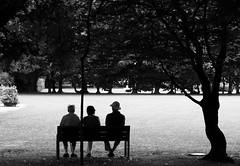 Huey, Dewey and Louie (Ren-s) Tags: blackandwhite france puydedôme auvergne europe contrast triplés people bench banc parc trees shadows ombres arbres personnes hat chapeau