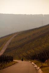 IMG_5078 (Lebemitgott) Tags: wandern badenwrttemberg sddeutschland weinberge beutelsbach waiblingen endersbach weinstadt remsmurrkreis schnait remshalten