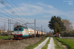 1008 - 652_064 + CISTERNE  (treno VILLAFRANCA D.V. - CALAMBRONE) A PISA 26-3-2013 FULL HD (Frank Andiver TRAIN IN TUSCANY) Tags: italy train canon frank photo italia photos rail trains tuscany rails locomotive toscana treno tigre fs trenitalia treni ferrovie binario 652 e652 fullhd andiver frankandiver trainintuscany