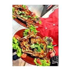 ปลากระพงทอดน้ำปลา เมนูจัดเลี้ยงกรุ๊ปทัวร์ #JMcuisine #หน้าไม่งอรอไม่นาน #เพชรบุรี เริ่มต้นหัวละ 120 บาท >> www.JM-cuisine.com