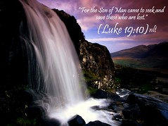 Luke 19:10 nlt (Bob Smerecki) Tags: life new love cup church true rock easter born high truth heaven king christ god shepherd spirit brother father ghost religion pray jesus luke lord christian mount holy moses again lamb bible alive commandments 1910 messiah risen salvation promise abba sanctuary tabernacle nations sabbath blessed redeemer righteousness almighty sins scriptures passover faithful inheritance oldtestament everlasting slain forgive baptised heals deciple crucified preist apostle forgiven resserection strongtower mosthigh ofolives