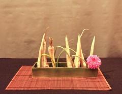 nordiclotus_20130925e (nordiclotus) Tags: ikebana morimono