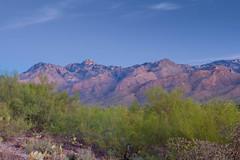 desert dawn (jimmy_racoon) Tags: b arizona sunrise landscape day desert tucson w clear 1740mm cpl tucsonarizona f4l 1740mmf4l bwcpl canonxsi