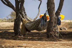 Hammock on the beach (kk_jack) Tags: sardegna holiday beach nature nikon hammock polarizer d3100