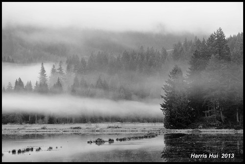The Fog Moved In - Minnekhada Park N13746e