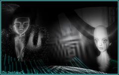 Regards ... (Tim Deschanel) Tags: life light costa blanco tim gallery tunnel exhibition sl exposition experience second bode haas dido burk deschanel tunneloflight mrmrsb maloe vansant nitroglobus