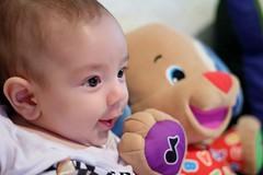 Friends (Japa ) Tags: family portrait baby toy brinquedo child retrato son famlia gift beb criana filho presente