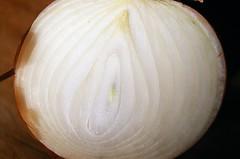01820016-84 (jjldickinson) Tags: wood table longbeach onion wrigley olympusom1 fujicolorpro400 promastermcautozoommacro2870mmf2842 promasterspectrum772mmuv roll460o2
