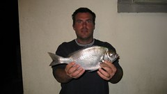 "BEN MALE'S Bream record • <a style=""font-size:0.8em;"" href=""http://www.flickr.com/photos/113772263@N05/11835453076/"" target=""_blank"">View on Flickr</a>"