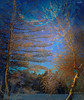 ~~~ secrets ~~~ (xandram) Tags: blue trees moon lake ice photoshop frost textures secrets texturesmyown