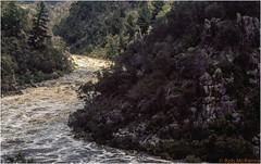 Duck Reach-1 (mckenart) Tags: film river landscape bush australia bushwalking tasmania gorge kodachrome fm2 v700 duckreach southeskriver launcestongorge