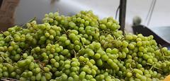 Grapes (wyojones) Tags: nyc newyorkcity usa newyork fruit chinatown manhattan grapes np fruitstand canalstreet mottstreet wyojones