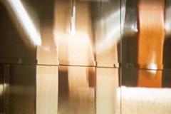 20140227-_DSC0979 (Fomal Haut) Tags: kyoto  williamkentridge    therefusaloftime parasophia voicegallery