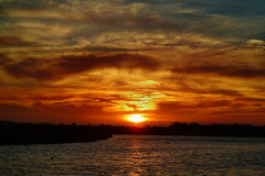 Lion King moment (eternitybegins2day) Tags: sunset sun nature water weather birds clouds photography bay photo australia melbourne williamstown