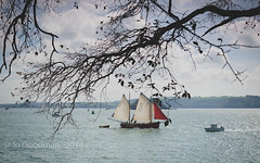 Boughs Under (JoGo...) Tags: blue trees sea sky clouds boats cornwall branches sails plymouth sunny bow yachts boughs cremyll devonmountedgcumbe