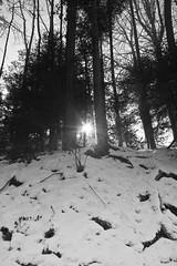 KrF_Sonnenberg_04 (dieeule.ch) Tags: winter schweiz switzerland luzern lucerne sonnenberg kriens