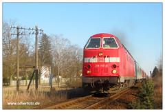 Herrensee - 219 155-9 (olherfoto) Tags: railroad train dr eisenbahn rail railway trains bahn uboot diesellok deutschereichsbahn ostbahn br219