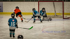 Saved (ausmc_1) Tags: canada ice hockey britishcolumbia save vancouverisland sharks february novice lakecowichan 2015 hockeytournament nikon300f4 nikond800 parksvilleflyers
