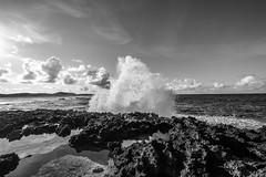 Guadeloupe (Elruner) Tags: blackandwhite nature monochrome noiretblanc monochromatic paysages guadeloupe pointedeschateaux