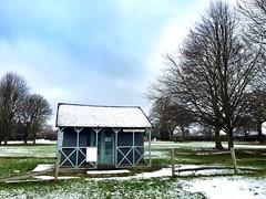 A Winter Afternoon at the Strawberry Fields (hellimli) Tags: surrey strawberryfields weybridge winterafternoon crockfordbridgefarm igerssurrey