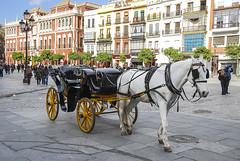 Espaa - Sevilla (Nailton Barbosa) Tags: espaa sevilla spain nikon espanha europa sevilha siviglia d80