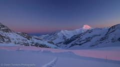 Aletschhorn Alpenglow (NakedMountain) Tags: travel blue sky snow ski mountains alps cold evening spring purple adventure climbing alpine alpenglow jungfrau skitouring mnch berneseoberland alpinism