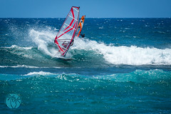 Wind Surfing Ho'okipa (brandon.vincent) Tags: ocean water hawaii surf pacific wind extreme maui windsurf hookipa suring