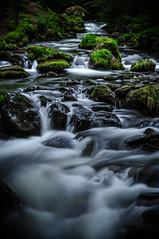 Nant Dol-goch (Dolgoch Stream) (Celtic-Wanderer) Tags: river stream watercourse dolgoch wales northwales longexposure water landscape nikon d5000