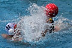 AW3Z8577_R.Varadi_R.Varadi (Robi33) Tags: summer men sports water swimming ball fight action basel swimmingpool watersports waterpolo sportspool waterpolochampionship