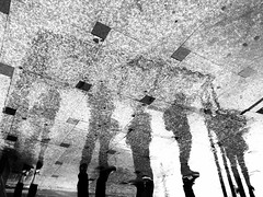 image (Adrian Mitu) Tags: street creative surreal pavement texture trees people upsidedown reversed puddle water reflection bw streetphotography leica sony fuji iphone iphonegraphy